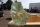 Glasbrocken Single Glasklar grünlich 21,40 kg