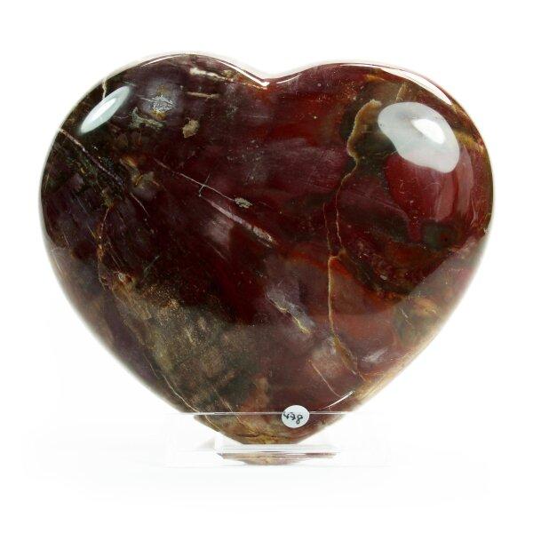 Versteinertes Holz Herz 1200g